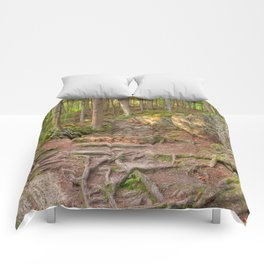 Green Mountain Forest Trail Comforters