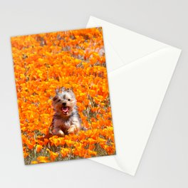 Yorkie in Poppies Stationery Cards