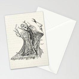 Arteries of the Neck Vintage Medical Illustration Stationery Cards