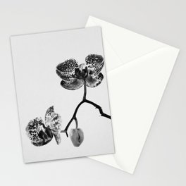 Simply a Orchid | Black & White Photography | Fine Art Photo Print Stationery Cards