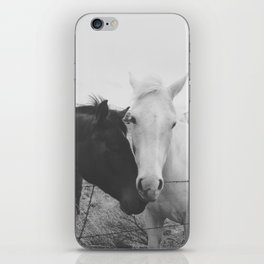 Horse Pair iPhone Skin