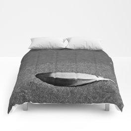 Fallen Feather Comforters