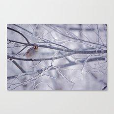 Winter friend 3. Canvas Print