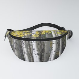 Yellow, Black, and White // Aspen Trees in Crested Butte Fanny Pack