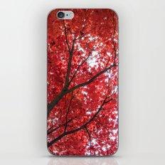 blazing red iPhone & iPod Skin