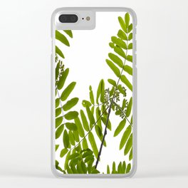 Green Rowan Leaves White Background #decor #society6 #buyart Clear iPhone Case