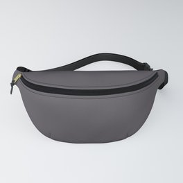 PPG Glidden Trending Colors of 2019 Blackhearth Charcoal Gray PPG1003-7 Solid Color Fanny Pack