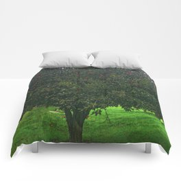 Apple Tree With Red Ripe Apples Comforters
