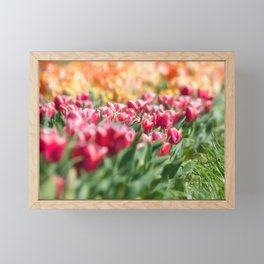 Tulips 11 #floral #tulip Framed Mini Art Print
