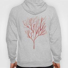 171122 Watercolour Tree| Abstract Watercolors Hoody