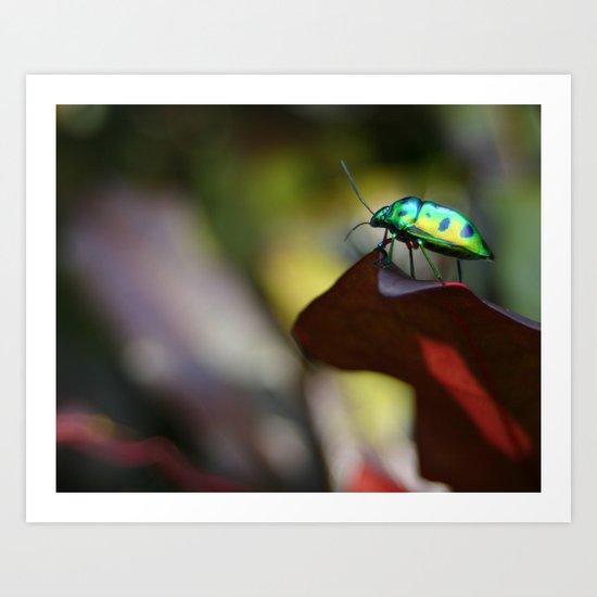 Iridescent Bug (Philippines) Art Print