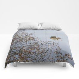 Red Tailed Hawk In Flight Comforters