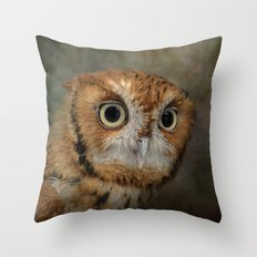 Portrait of An Eastern Screech Owl Throw Pillow
