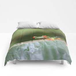 Red eye Frog on leaf Costa Rica Photography Comforters
