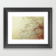 Winter Weeds Framed Art Print