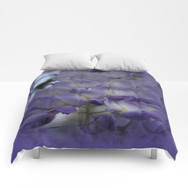 Purple and Violet Wisteria Blossom Comforters