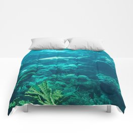In the big blue world... Comforters