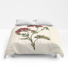 M. de Gijselaar - Red Flower (1830) Comforters