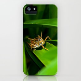 Lubber in the bush iPhone Case