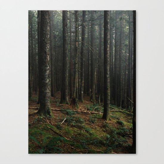 Gorge Woods Canvas Print