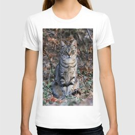 Sitting cat posing T-shirt
