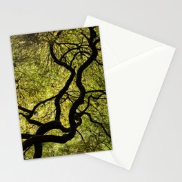 Japanese Maple Tree Stationery Cards