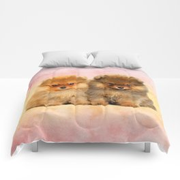 Cute Pomeranian Puppies Comforters