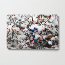 Blueberries, first snow Metal Print