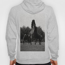 Wild Horses in Black and White Hoody