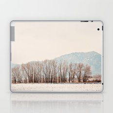 snowy Laptop & iPad Skin