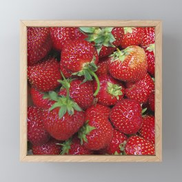 Strawberry Season Framed Mini Art Print