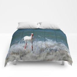 Florida White Ibis Comforters