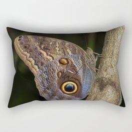 Owl butterfly in Costa Rica - Tropical moth Rectangular Pillow