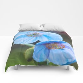 Himalayan Blue Poppy Comforters