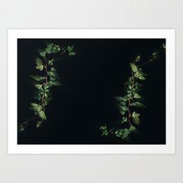 growth inside the dark Art Print