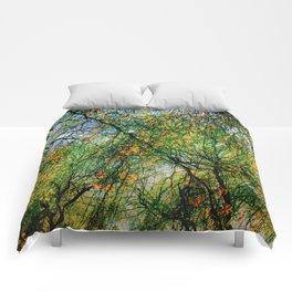 Barcelona Summer Comforters