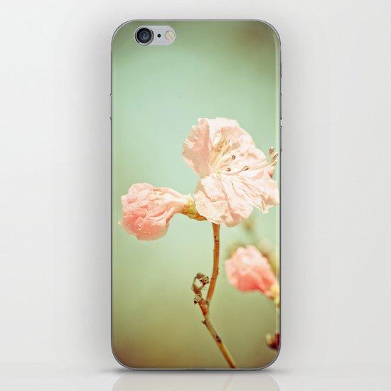 Aprils' Pink blossom iPhone & iPod Skin