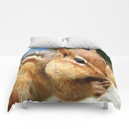 Stuffed Comforters