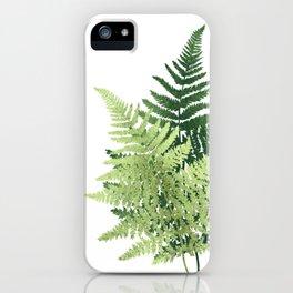 Summer Forest Ferns iPhone Case