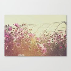 October Blooming 03 Canvas Print