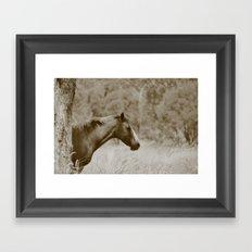 Missi Framed Art Print