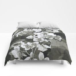 Chiaroscuro Comforters