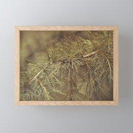 Spilt Needles Framed Mini Art Print