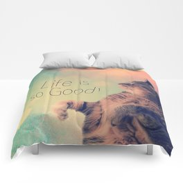 Dancing Kitty Cat Comforters