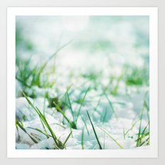 Frosted Morning; Art Print