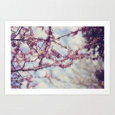 Niagara Blossoms Art Print