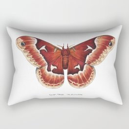 Tuliptree Silkmoth (Callosamia angulifera) Rectangular Pillow