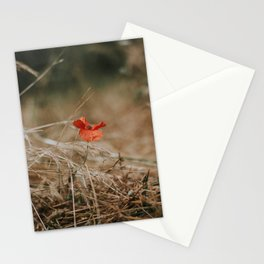 Single Poppy Stationery Cards