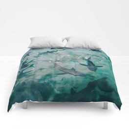Shoal of Sharks (Color) Comforters