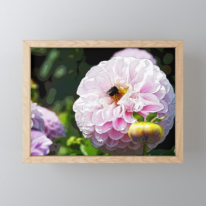Pink Dahlia with Bee Framed Mini Art Print
